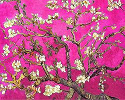 Van Gogh, Pink Almond Blossom