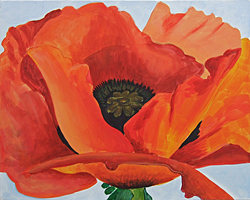 Georgia O'Keeffe, ''Red Poppy''