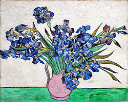 Van Gogh, irises in pitcher