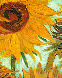 Van Gogh, Big Sunflower
